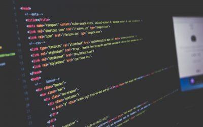 The Jungle of Programming – Night University 2018